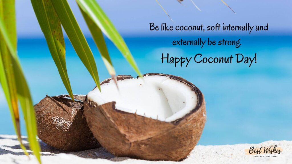 world coconut Day Images