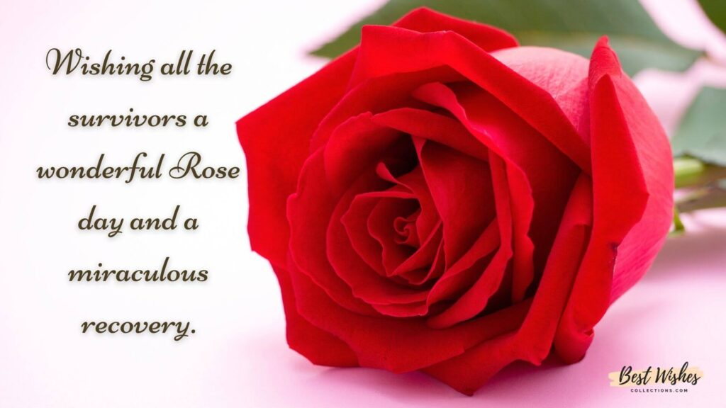 World Rose Day quotes